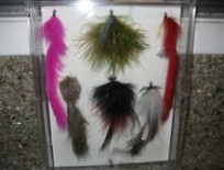 Pike Fly Collection