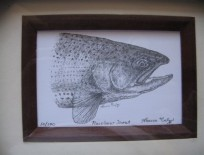 Framed Rainbow Trout Lithograph
