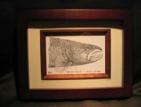 Framed Brown Trout Lithograph